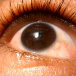 identificaciones-biometricas